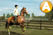 Jeu My Horse