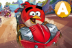 Jeu Angry Birds Go !